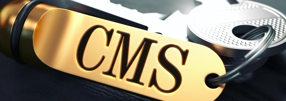 The Future of Content Management: How to Choose a CMS